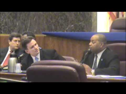 Police Committee Meeting--Chicago City Council (2/6/09)