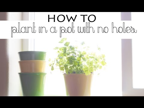 How To Plant In A Pot With No Holes Gardening Milly Makes