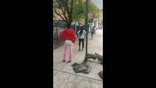Small girl fight big girl (who won)