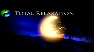 Baixar Relaxing Music; Yoga Music; Reiki Music; New Age Music; Relaxation Music; Spa Music; 🌅 617