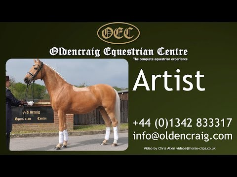 Horse For Sale: Artist