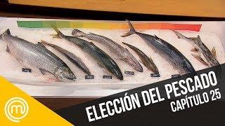 La elección del pescado   MasterChef Chile 3   Capítulo 25
