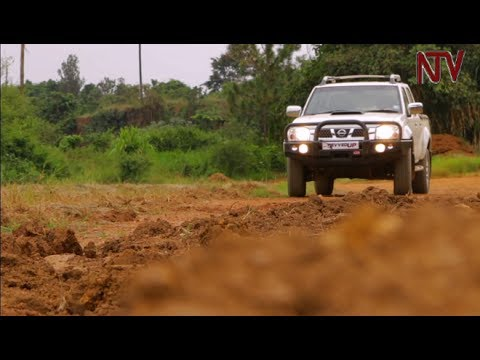 Revved Up: The Nissan Hard Body