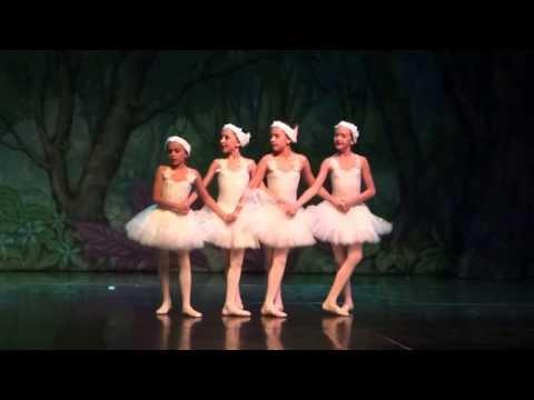 Lívia Faber - Ballet Barbie e as Sapatilhas Mágicas - Lago dos Cisnes