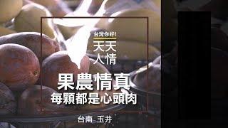 台南玉井 果農情真 每顆都是心頭肉 - 人情系列