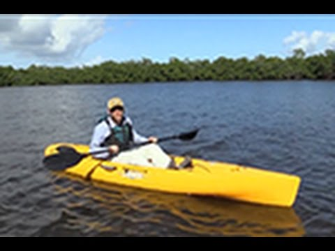 Hobie Quest 11 Walkthrough