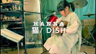 小学生弾き語りカバー  猫/ DISH  HANNA  Guitar&Vocal  Toruschool.com