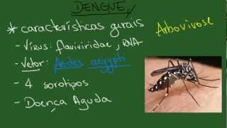 Dengue - Resumo - Infectologia