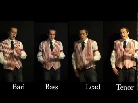 Sincere (The Music Man) - One Man Barbershop Quartet - Rhett Roberts