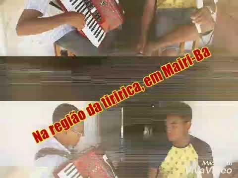 Zé Rufino do acordeon