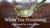 Tea Manufacturing - YouTube