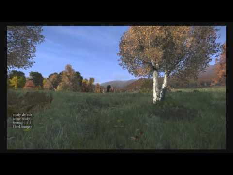 DayZ Standalone How to spawn near the NW-Airfield