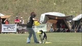 2010年6月6日高知春野運動公園フリーフライト4