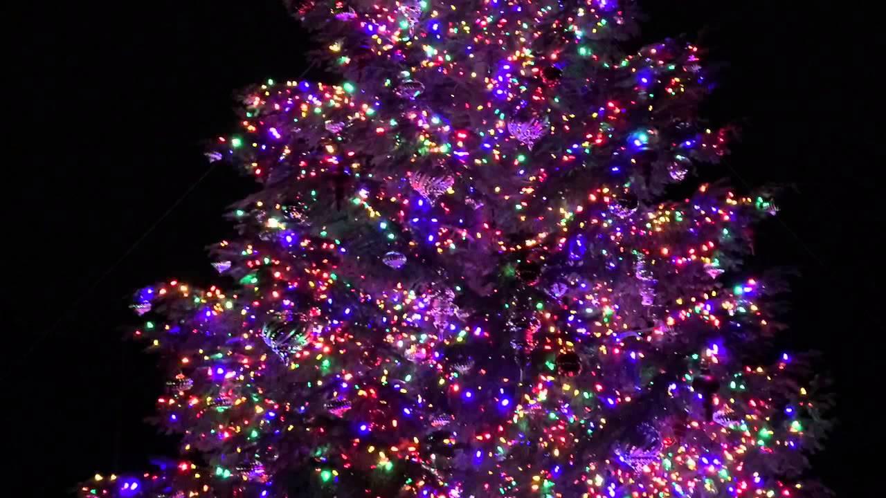 longwood gardens christmas - Longwood Gardens Christmas Lights