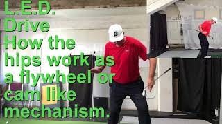 Introducing LED, a simple way to coordinate your arms and body motion.