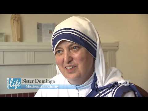 Missionaries Of Charity   Kentucky Life   KET