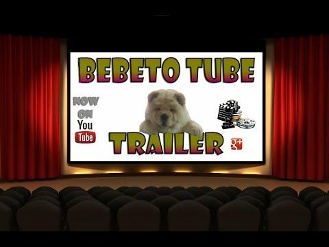 Bebeto tube-(chow chow dog)Official trailer