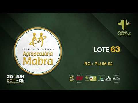 LOTE 63  PLUM52