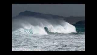 Die perfekte Welle!