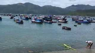 Lobster farm Vietnam