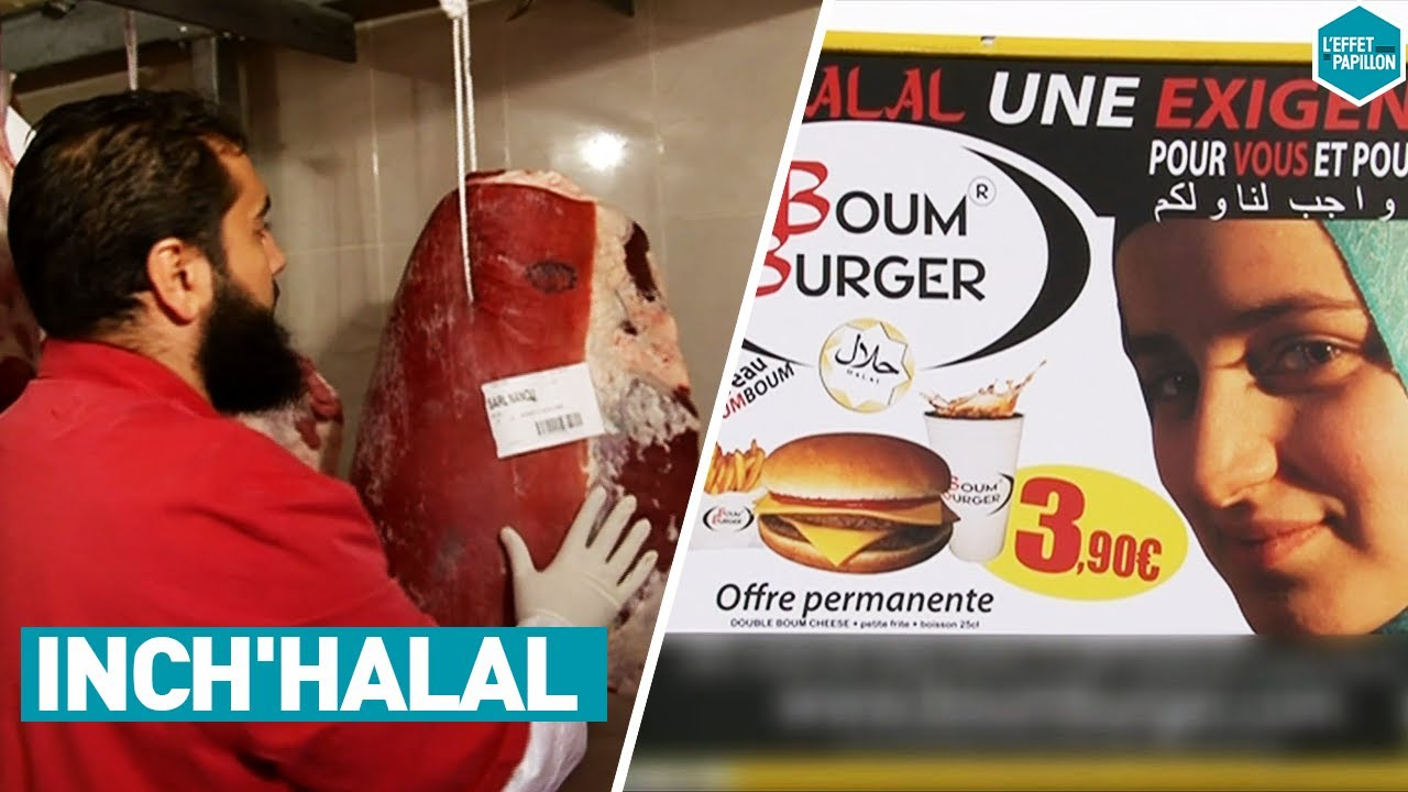 Download LE BUSINESS DU HALAL (France) - L'Effet Papillon
