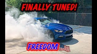Rebuilding A Wrecked 2017 Mustang GT part 18