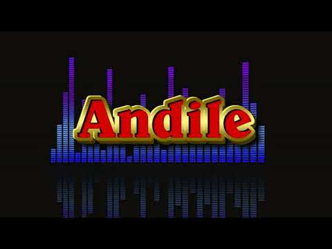 Andile (I Am Not a DJ) Track 2 - Weakness in me remix