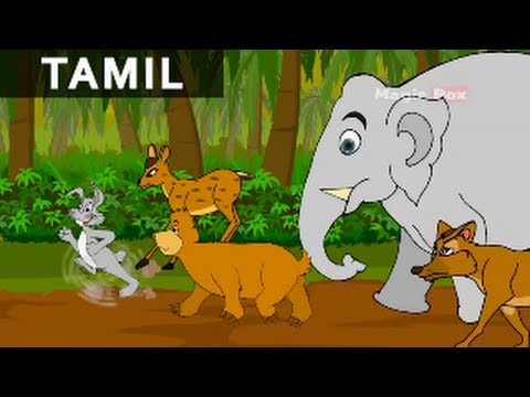 Rabbits Dream   முயலின் கனவு   Jataka Tales In Tamil   MagicBox Tamil Stories
