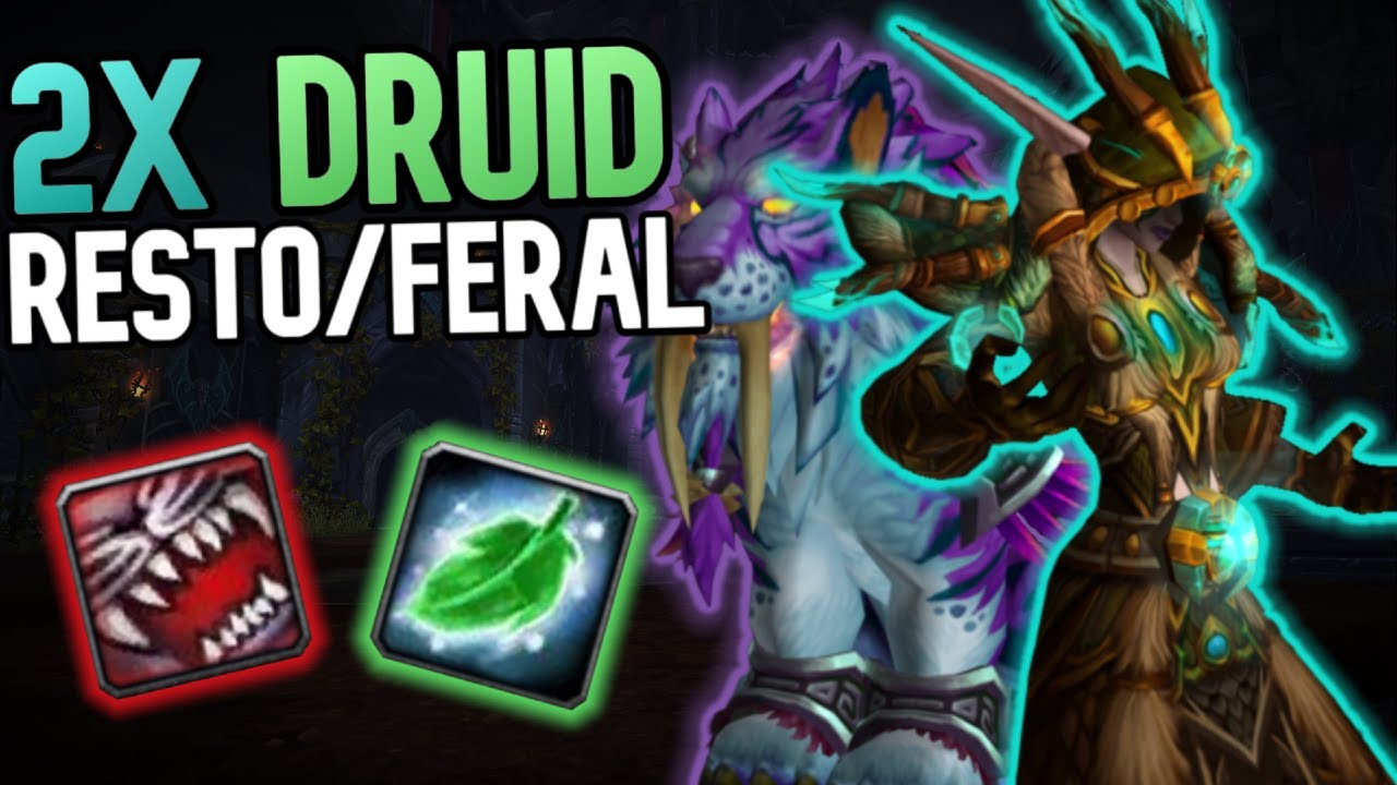 Feral Resto 2x Druid Actually A Good Comp Wow Arena Bfa 8 3 Pvp Youtube