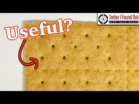 Why Do Crackers Have Holes?