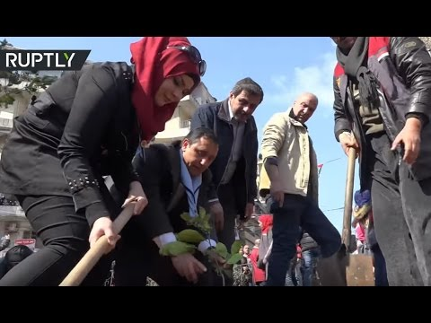'Community Service': Russian, SAA troops clean up debris, plant olive trees in Aleppo