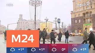 Смотреть видео На смену оттепели в Москву идут морозы - Москва 24 онлайн