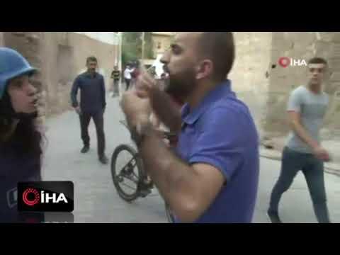 Mardin'de terör yandaşları muhabire saldırdı