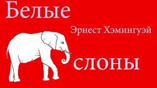 Белые слоны. Рецензия по полочкам