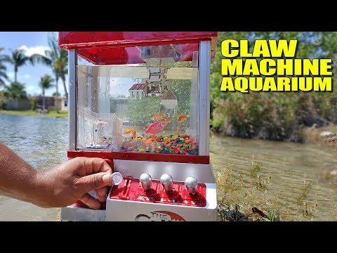 WORLD'S FIRST! Claw Machine Aquarium DIY