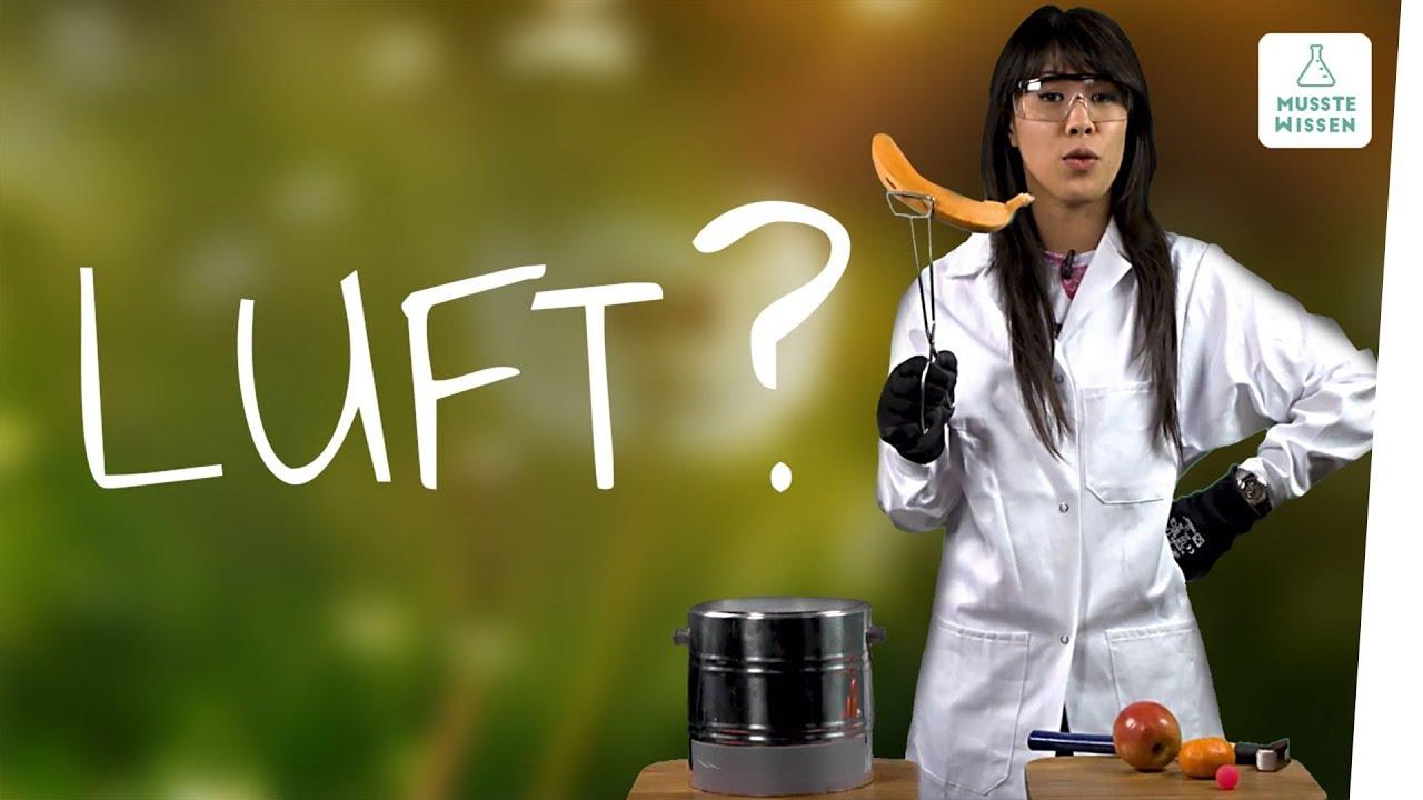 Download Zusammensetzung der Luft I musstewissen Chemie