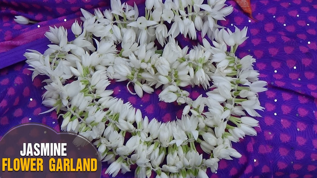 How To Make Jasmine Flower Garland Easy Method Without Needle From