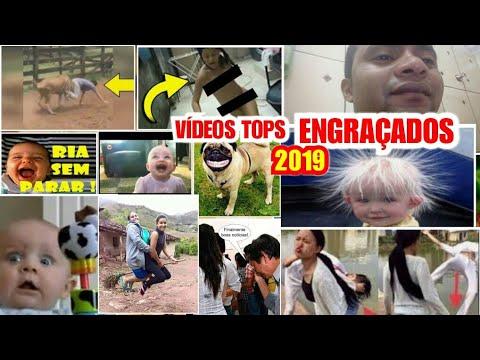 videos engraçados 2019