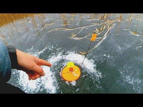 Оставил жерлицы всего на 15 минут... Сработка за сработкой! Рыбалка на щуку! Не первый лёд!