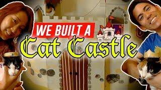 We built a CAT CASTLE! (中文字幕)