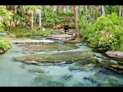 Kelly Park Rock Spring Florida - Where to go in Orlando Area outside of theme parks.