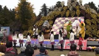 弘前城菊と紅葉まつり (弘前城植物園)