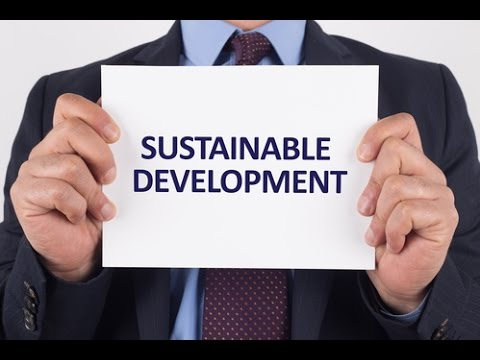 Agenda 21: UN Sustainable Development For Global Governance