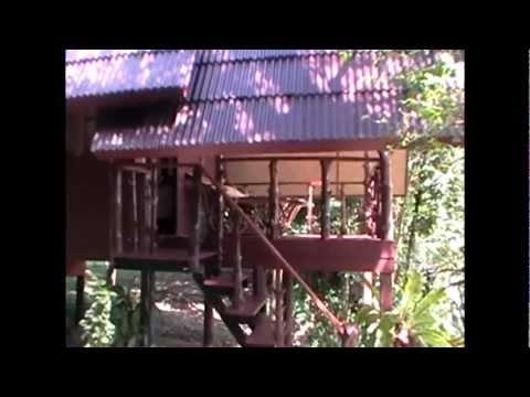 Mountain View Bungalow - Khao Sok Paradise Resort