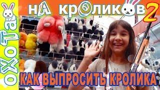 видео Где купить мехового кролика