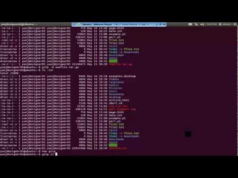 UNIX-1.3 UNIX Commands and Options