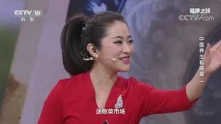 [健康之路]中医养生私房菜(一) 吃什么不上火?| CCTV科教