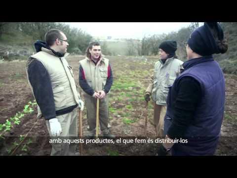 Horts de Sòria_ Convocatòria Emprenedoria Social. Obra Social