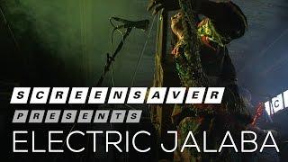 ELECTRIC JALABA: Live on SCREENSAVER