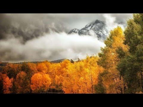 Природа восени. Ознаки